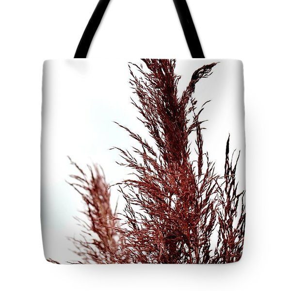 Feather Top Tote Bag by Maria Urso
