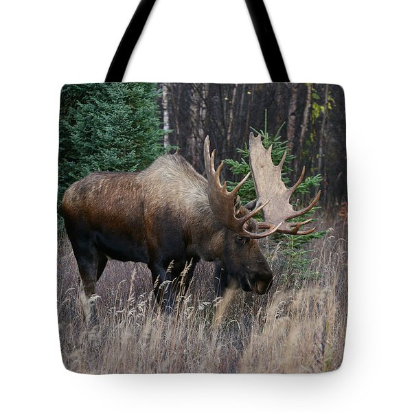 Tote Bag featuring the photograph Feeding by Doug Lloyd