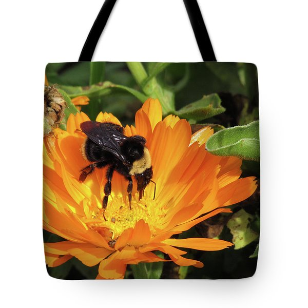 Feeding In Calendula Tote Bag