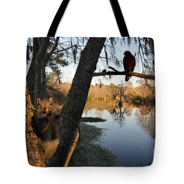 Tote Bag featuring the photograph Feel Like Being Watched by Dan Friend