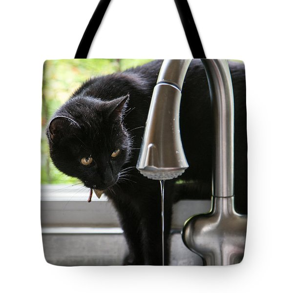 Tote Bag featuring the photograph Feline Fascination by Sonny Marcyan
