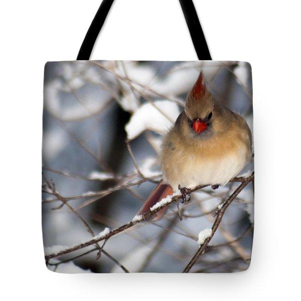 Female Northern Cardinal 4300 Tote Bag