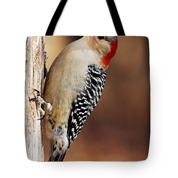 Female Red-bellied Woodpecker 5 Tote Bag by Larry Ricker