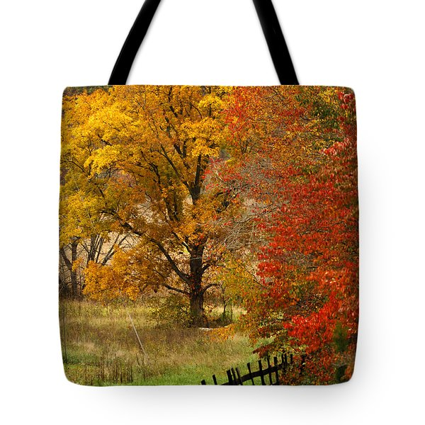 Fence In Autumn Tote Bag by Randall Branham