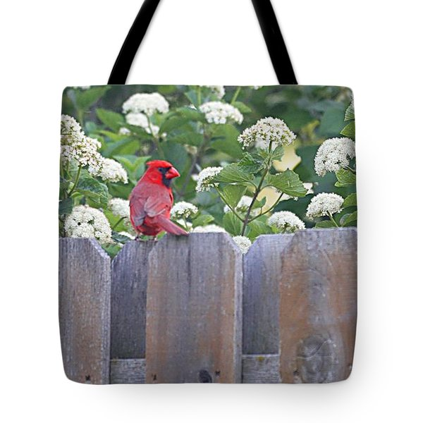 Tote Bag featuring the photograph Fence Top by Elizabeth Winter