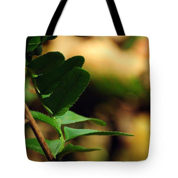 Fern Curve Tote Bag by Rebecca Sherman