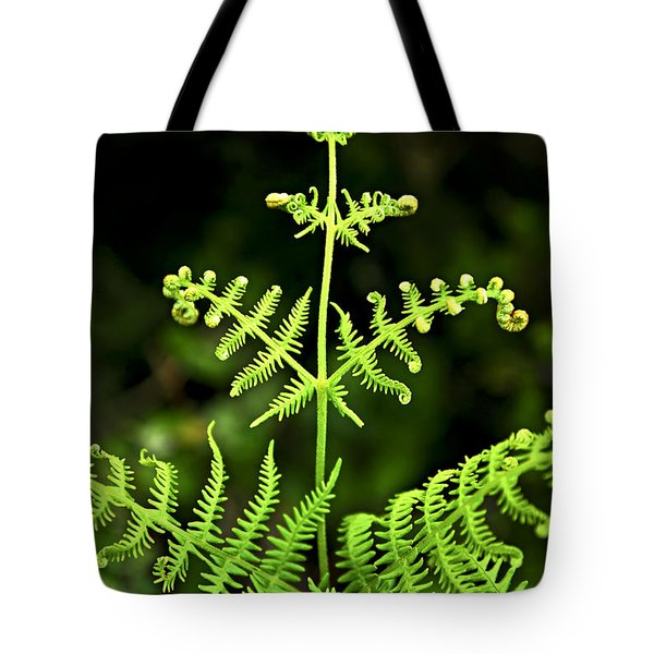 Fern Leaf Tote Bag by Elena Elisseeva