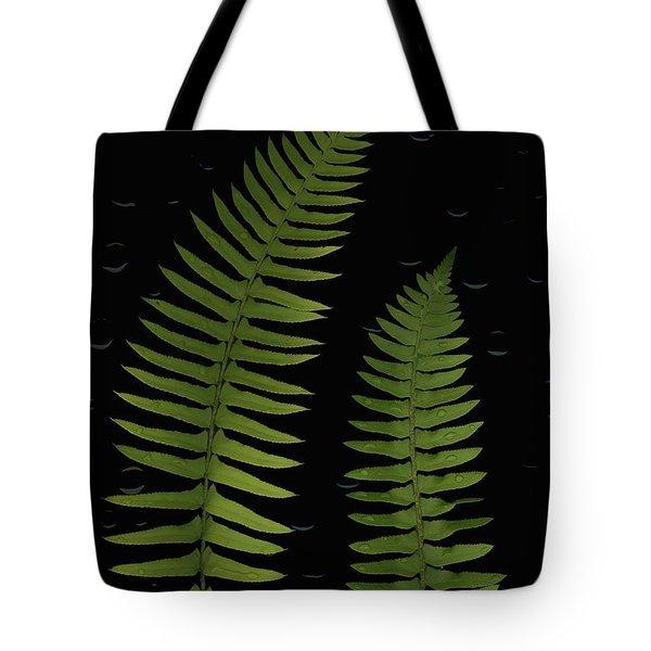 Fern Leaves With Water Droplets Tote Bag by Deddeda