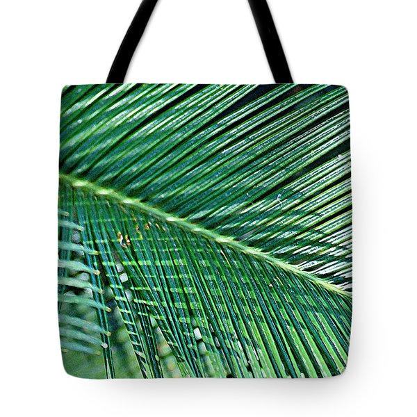 Tote Bag featuring the photograph Ferns 56 by Donna Bentley