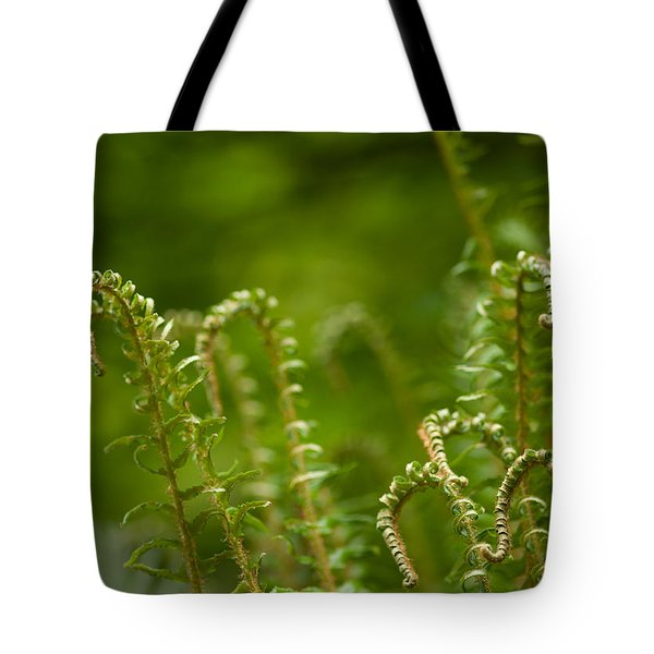 Ferns Fiddleheads Tote Bag by Mike Reid