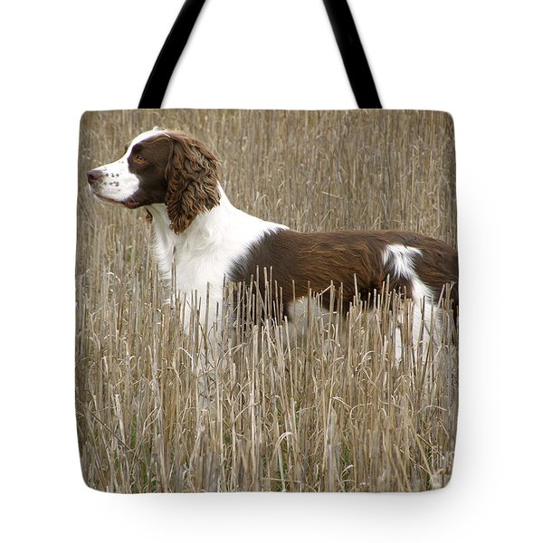 Field Bred Springer Spaniel Tote Bag