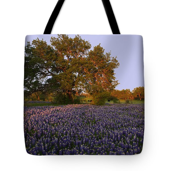 Tote Bag featuring the photograph Field Of Blue by Susan Rovira
