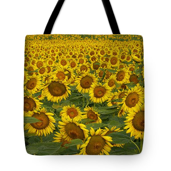 Field Of Domestic Sunflowers Tote Bag by Kenneth M Highfill and Photo Researchers