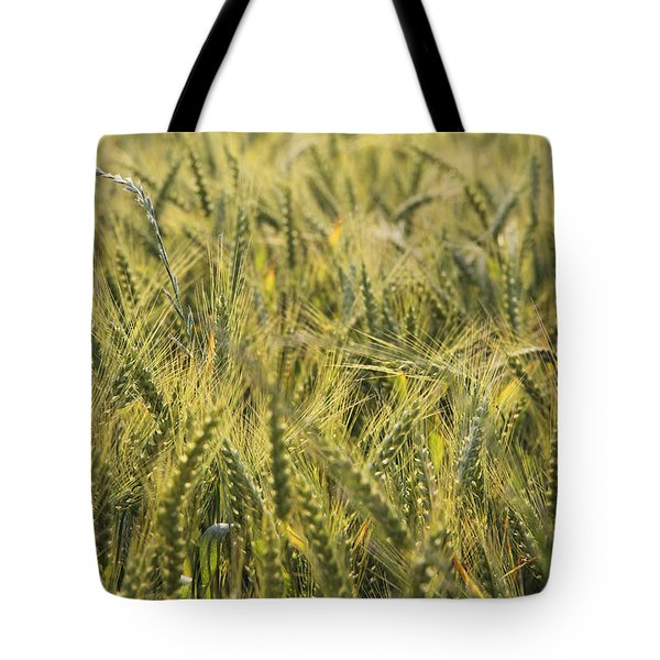 Field Of Green Tote Bag by Mike McGlothlen