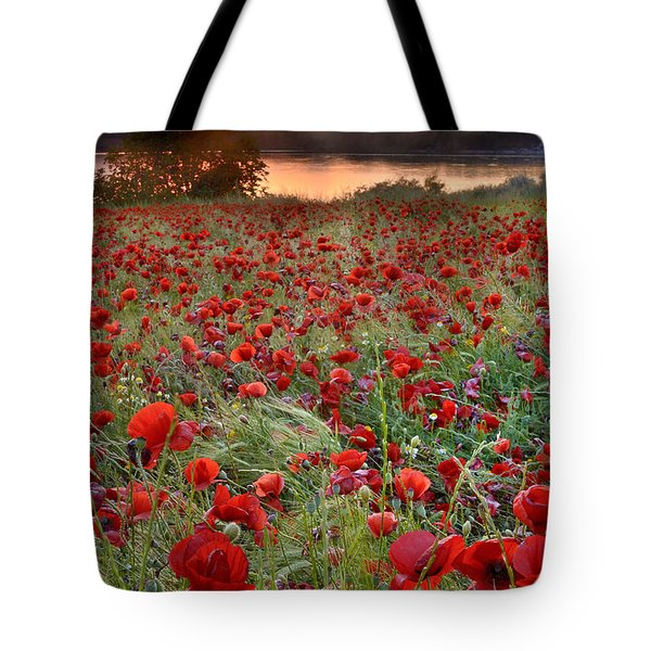Field Of Poppies Tote Bag by Guido Montanes Castillo