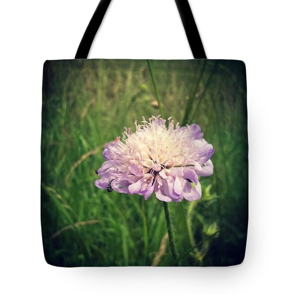 Field Scabious Wild Flower Tote Bag