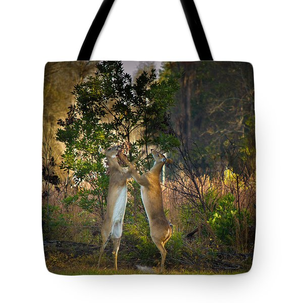 Fight Club Tote Bag by Christopher Mobley