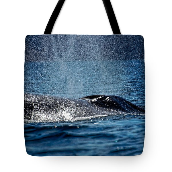 Tote Bag featuring the photograph Fin Whale Spouting by Don Schwartz
