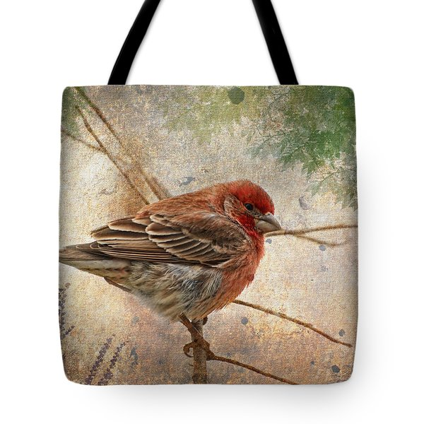 Finch Art Or Greeting Card Blank Tote Bag by Debbie Portwood