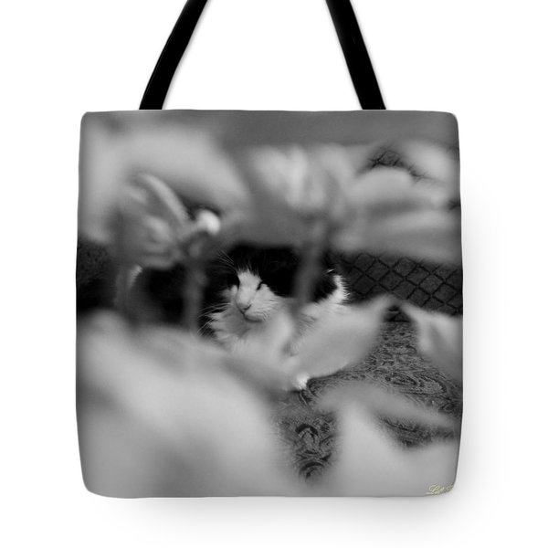 Find The Kitty Tote Bag by Jeanette C Landstrom