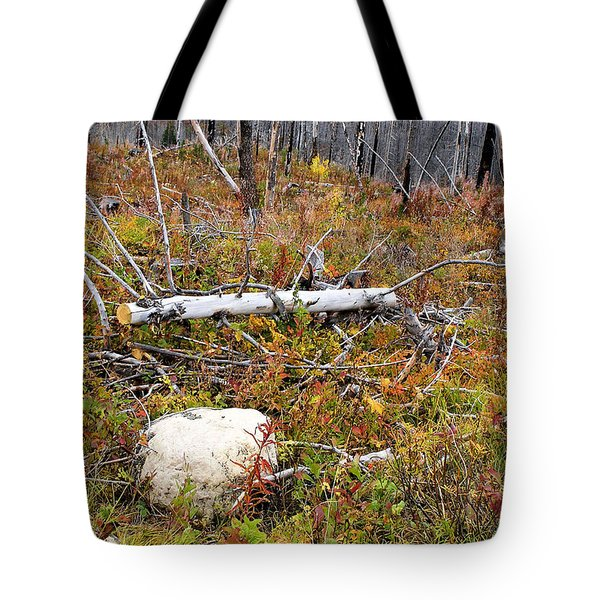 Fire And Fall Tote Bag by Susan Kinney