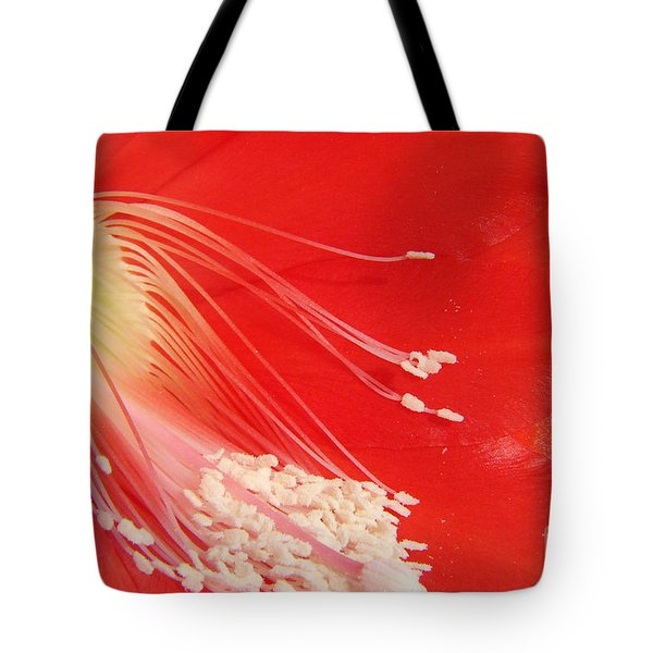 Fire Cactus Tote Bag by Priscilla Richardson