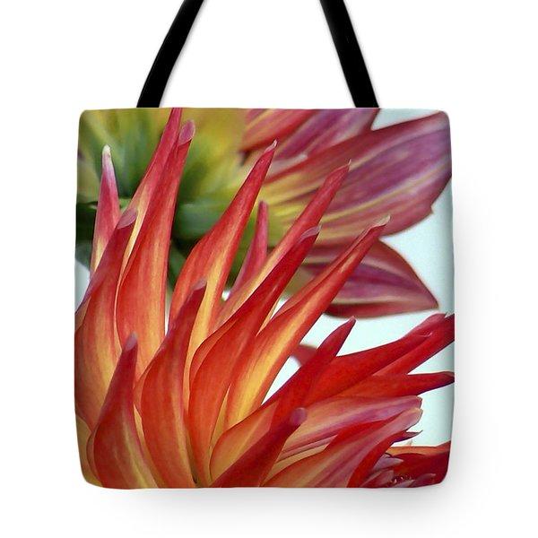 Firecracker Dahlia Tote Bag by Pamela Patch