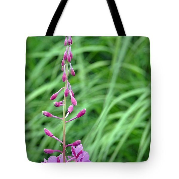Fireweed Tote Bag by Lisa Phillips