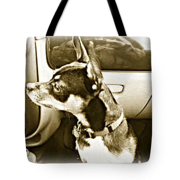 Tote Bag featuring the photograph First Ride Home by Pamela Hyde Wilson