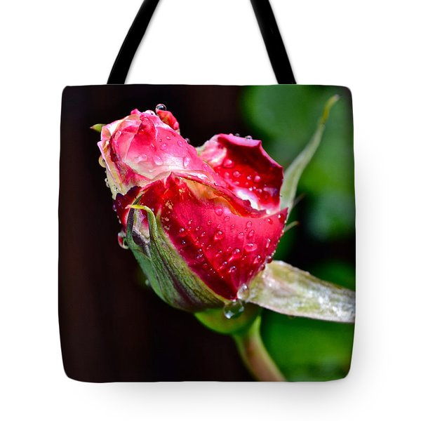 First Rose Tote Bag by Bill Owen