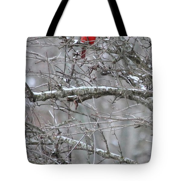 Tote Bag featuring the photograph First Snow Fall by Kume Bryant