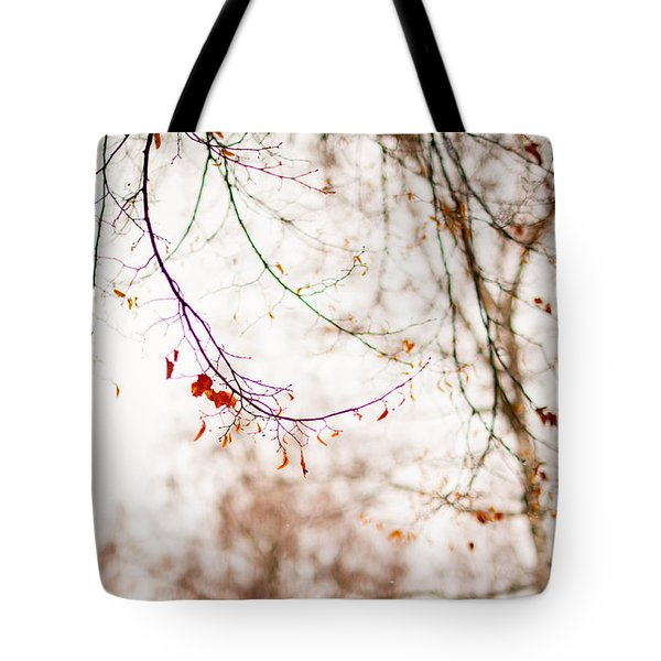 First Snow. Touch Of Gold Tote Bag by Jenny Rainbow