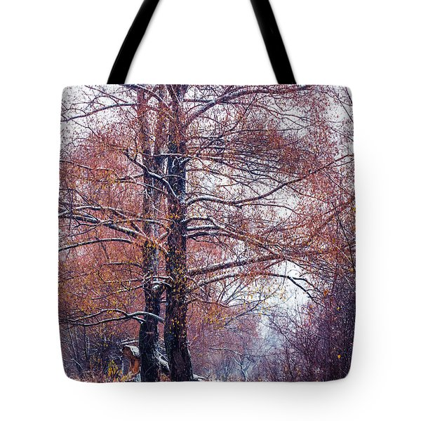 First Snow. Winter Coming Tote Bag by Jenny Rainbow