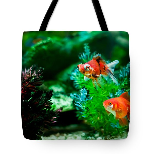 Tote Bag featuring the photograph Fish Tank by Matt Malloy