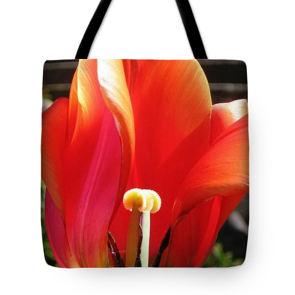 Flame Tote Bag by Rory Sagner