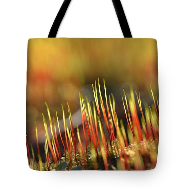 Flaming Moss Tote Bag