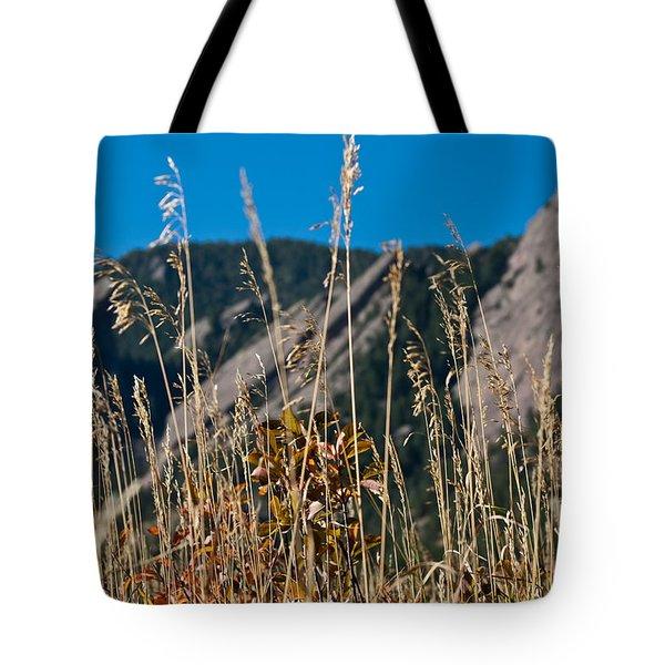 Flatiron Beauty Tote Bag