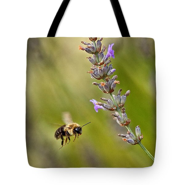 Flight Of The Bumble Tote Bag by Karol Livote