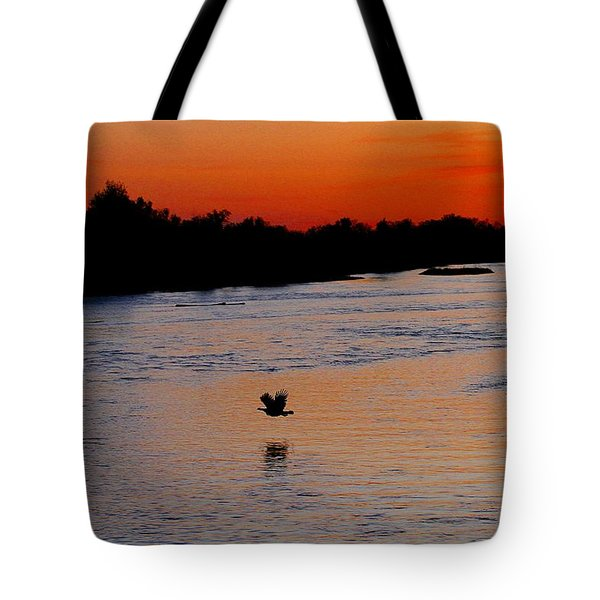 Tote Bag featuring the photograph Flight Of The Turkey by Elizabeth Winter