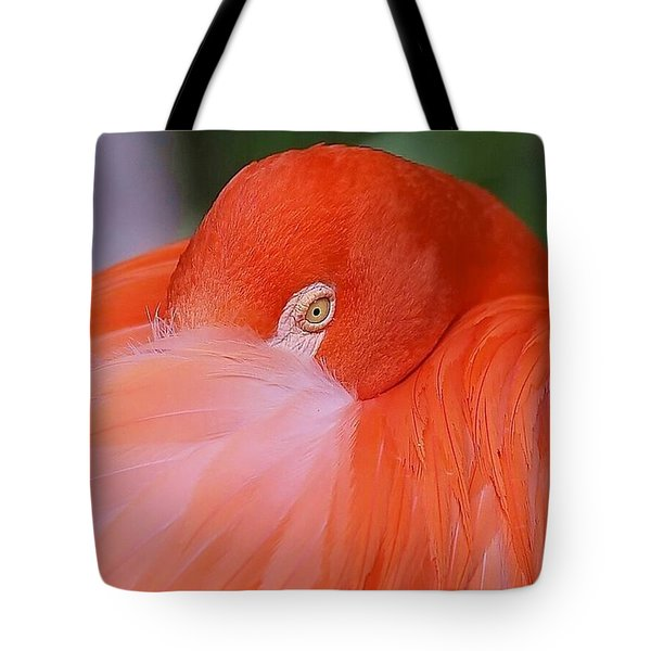 Flirty Flamingo Tote Bag by Myrna Bradshaw