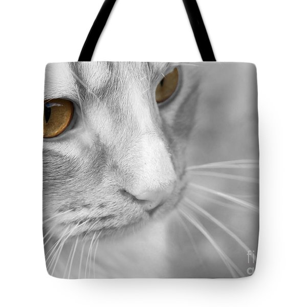 Flitwick The Cat Tote Bag by Jeannette Hunt