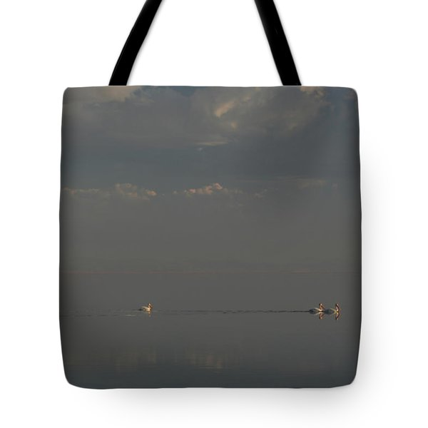 Floating Along Tote Bag by Laurie Search