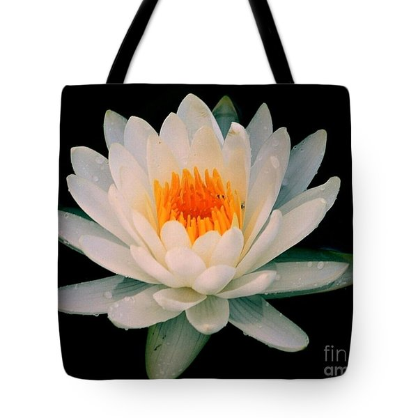 Floating Beauty Tote Bag by Myrna Bradshaw