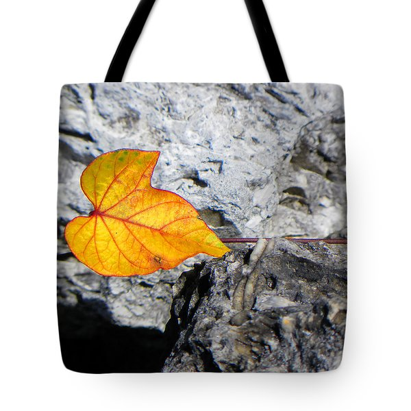 Tote Bag featuring the photograph Floating On Stone by Rosalie Scanlon