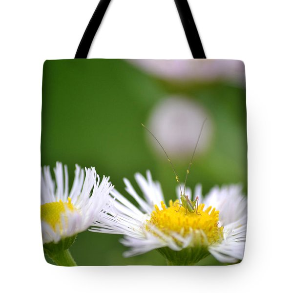 Tote Bag featuring the photograph Floral Launch-pad by JD Grimes