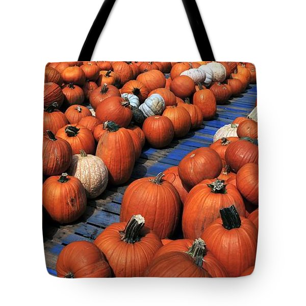Florida Gator Pumpkins Tote Bag by David Lee Thompson