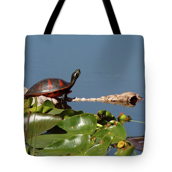 Florida Redbelly Turtle Tote Bag
