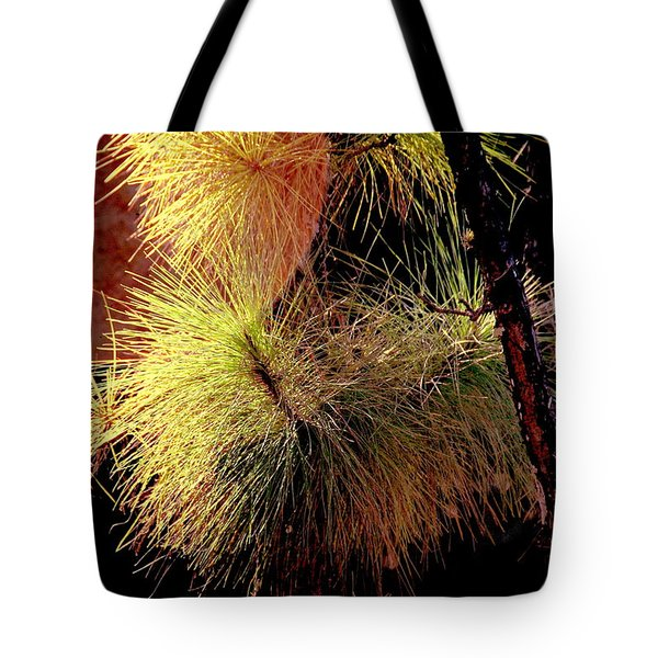 Florida Tree Tote Bag