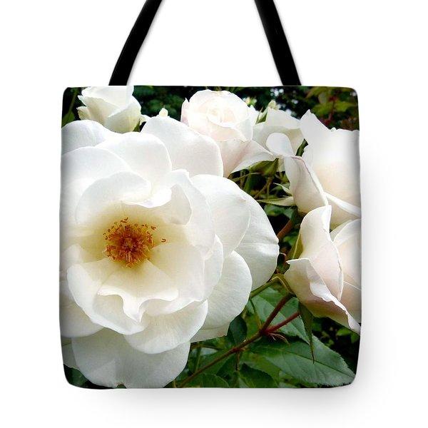 Flourishing Iceberg Roses Tote Bag by Will Borden