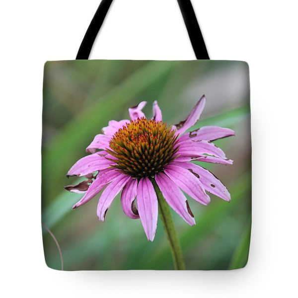 Flower At Waterfall Glen Forest Preserve Tote Bag